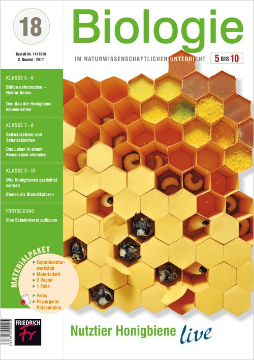 Nutztier Honigbiene live