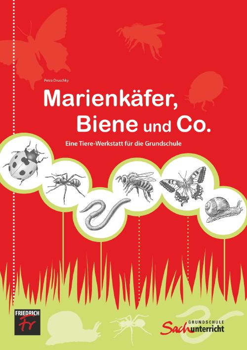Marienkäfer, Bienen & Co