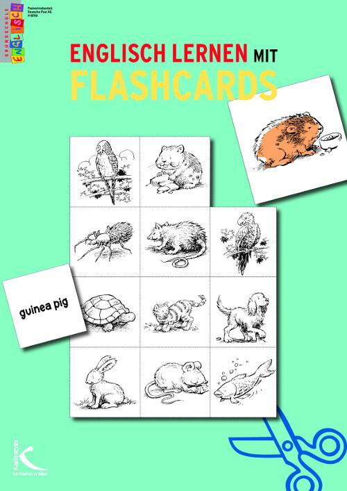 Englisch lernen mit flashcards