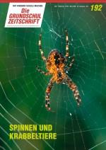 Spinnen und Krabbeltiere