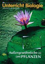 Außergewöhnliche(s) (an) Pflanzen