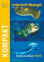 Vielfalt unter Wasser: Fische