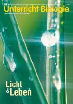 Licht & Leben