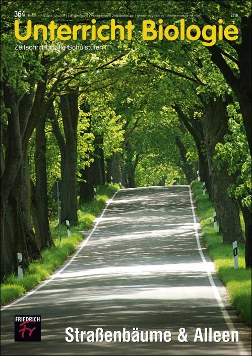 Straßenbäume & Alleen