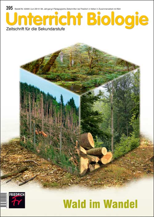 Wald im Wandel