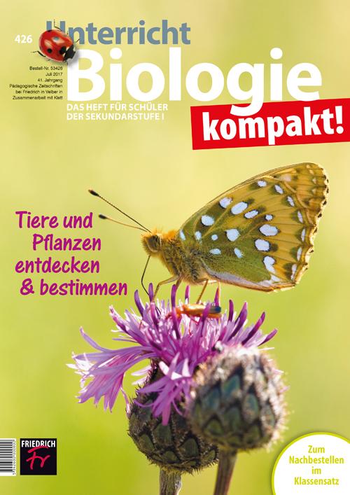 Tiere und Pflanzen entdecken & bestimmen