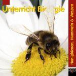 Honigbienen Hummeln & Wespen