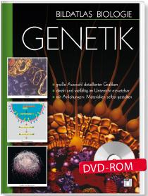 Bildatlas Biologie – DVD 2
