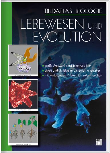 Bildatlas Biologie – DVD 6