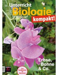Erbse, Bohne & Co.